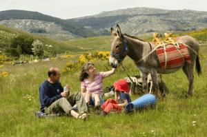 Randonnée avec un âne dans les Cévennes