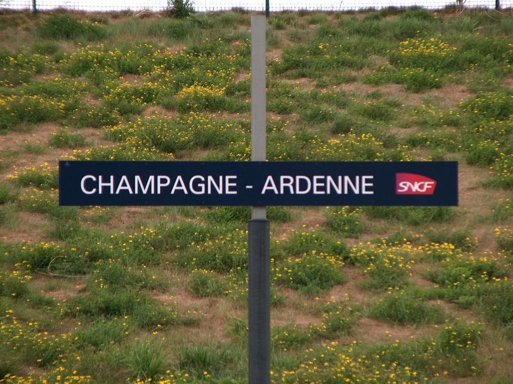 Passer les vacances d'été en Champagne-Ardenne