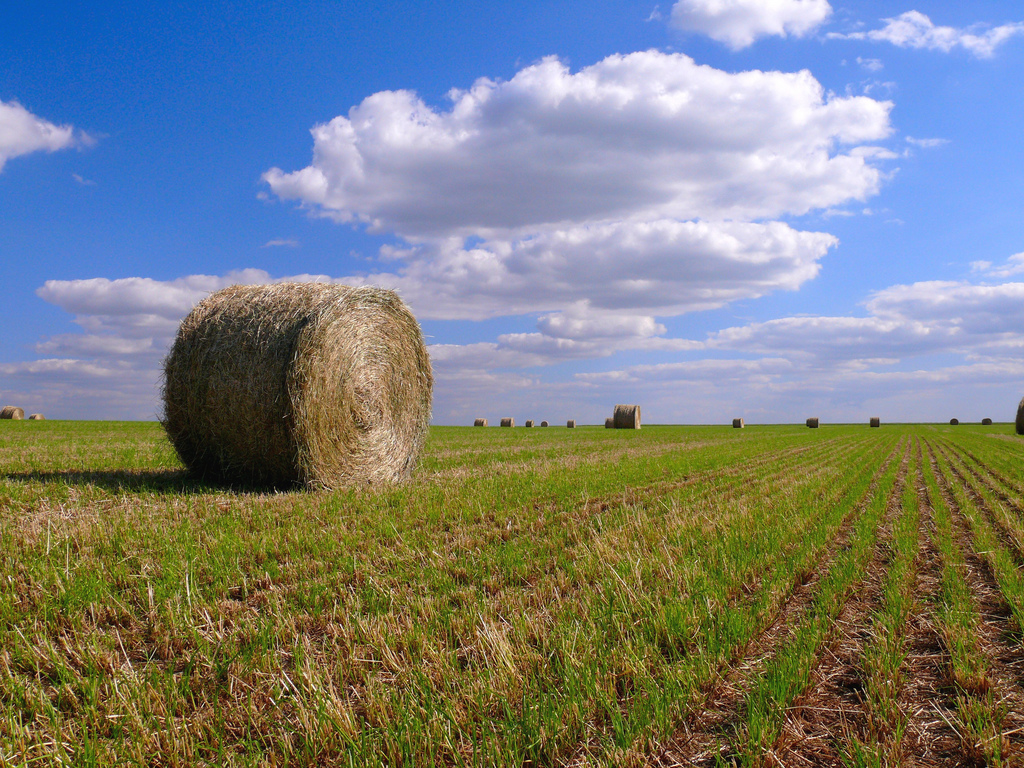 Passer les vacances d'été en Pays de la Loire