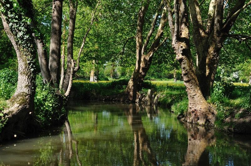 Passer les vacances d'été en Poitou-Charentes