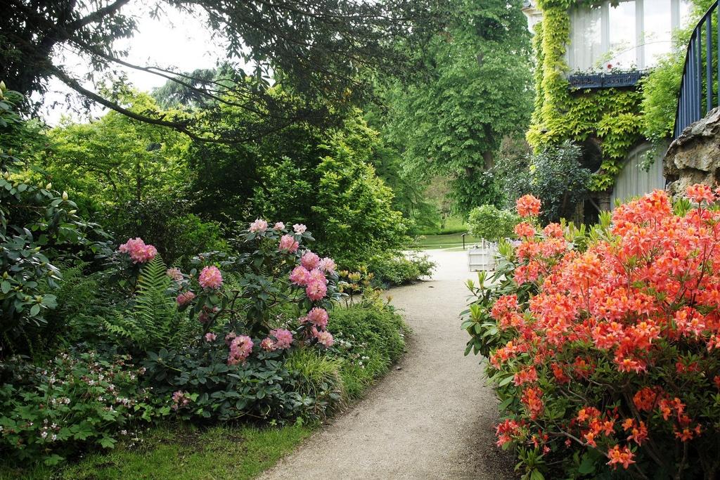 5 principes pour un jardin plus écolo
