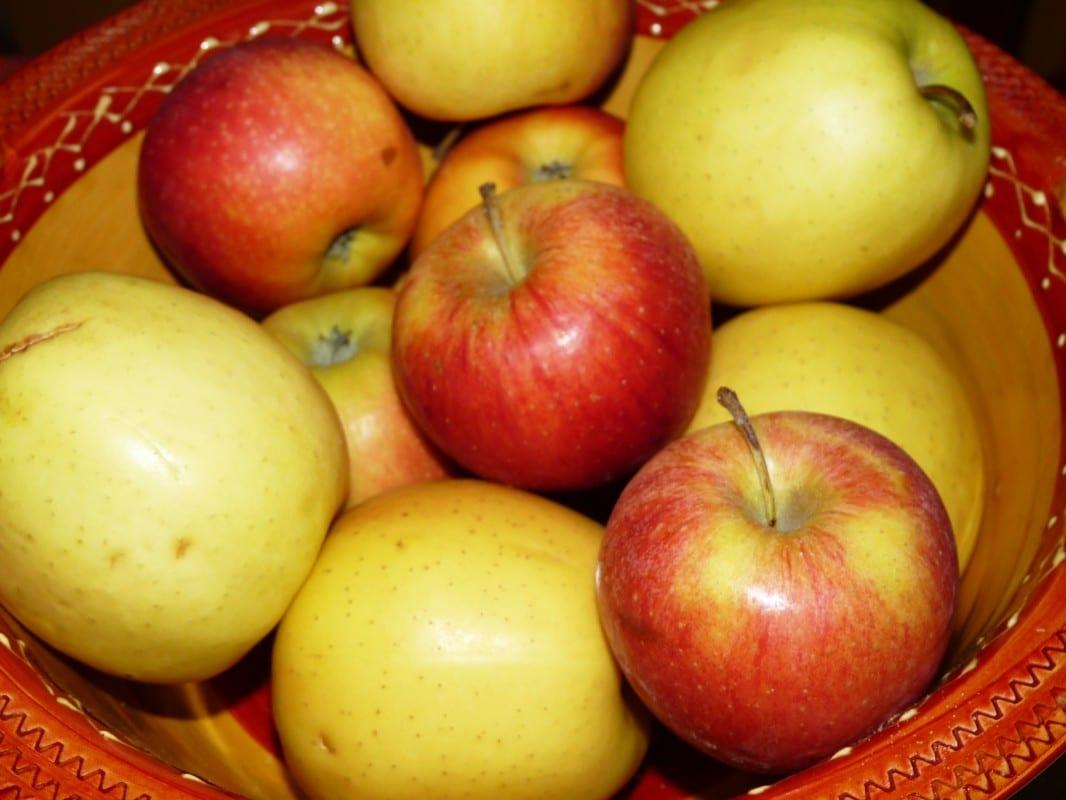 Dégustation des pommes locales