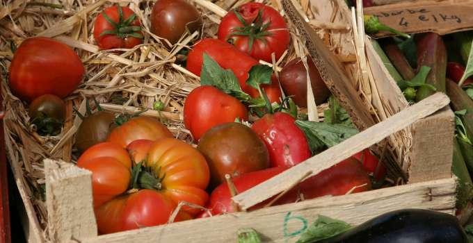Tomates et légumes au marché