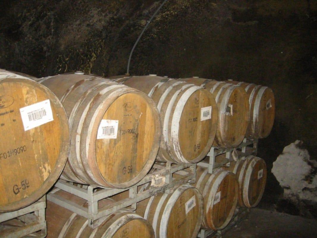Qu'est-ce qui se cache derrière le label: vin biologique?