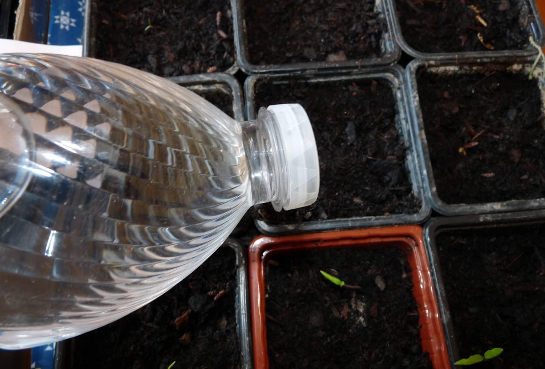 Recycler une bouteille de vinaigre pour arroser les semis