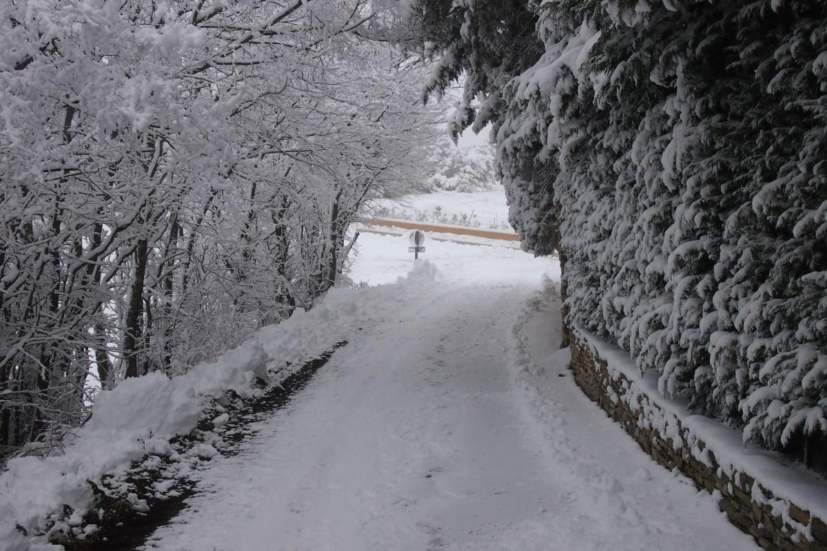 Lutter contre les affections de l'hiver