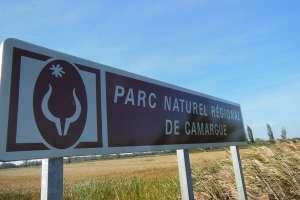 PNR camargue - Copie