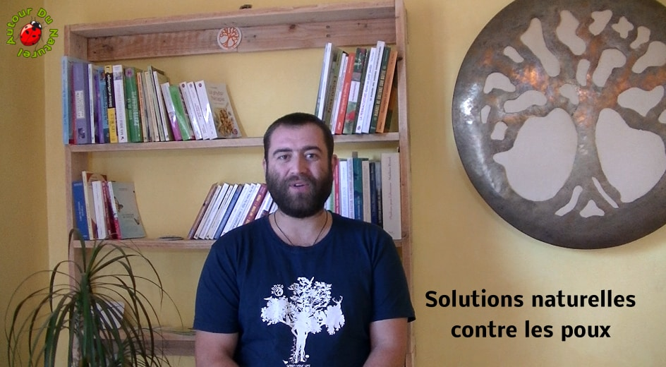 Défi 100 vidéos – Jour 17 – Solutions contre les poux