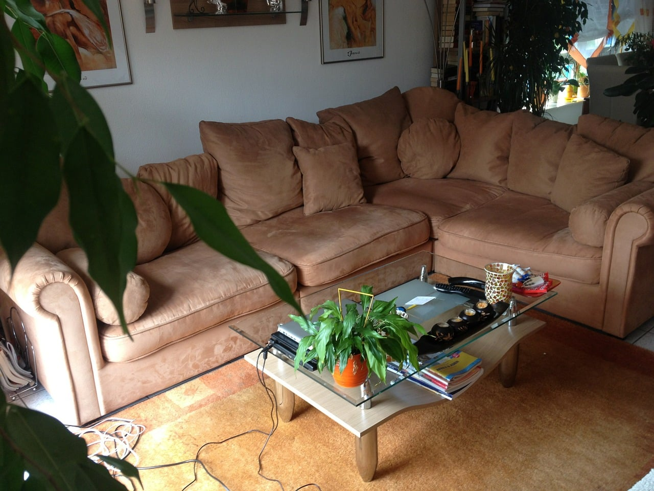 Le produit magique pour enlever les odeurs de tabac sur un canapé