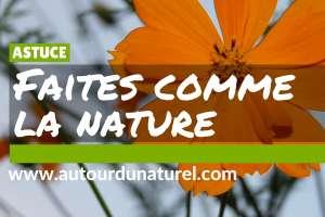 Faites comme dans la nature (3)